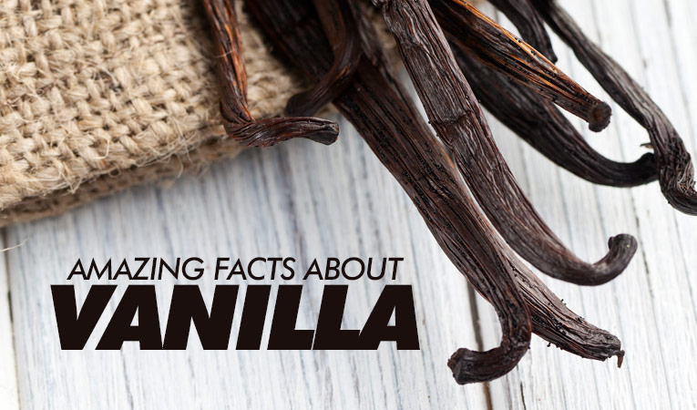 Amazing facts about vanilla flavour