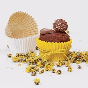 Cupcake & Mini Cake Liners